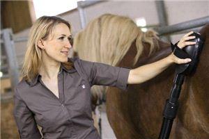 Комплект насадок Karcher для  чистки лошадей