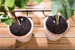 Комплект Karcher Rain System для полива цветочных горшков