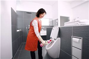 Концентрированное средство для общей чистки санузлов Karcher CA 10 C (1л)